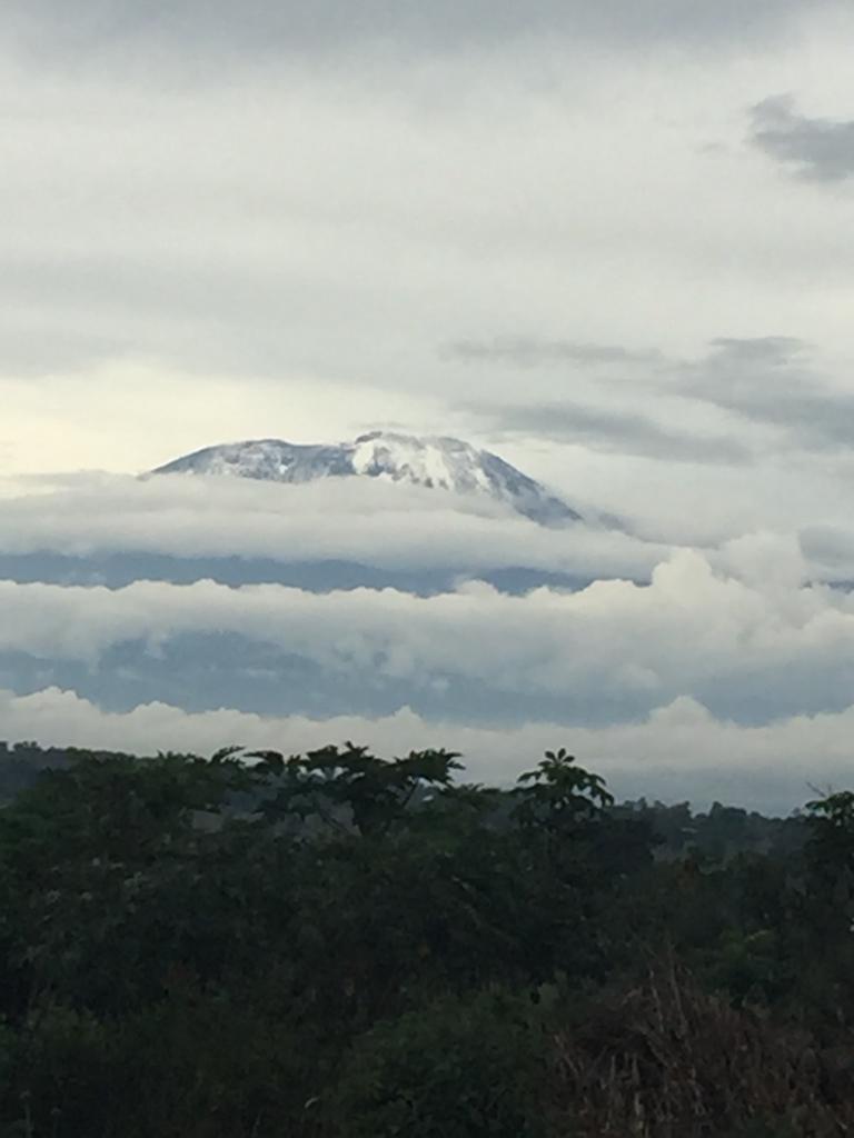 Mt. Kilimanjaro at dusk.
